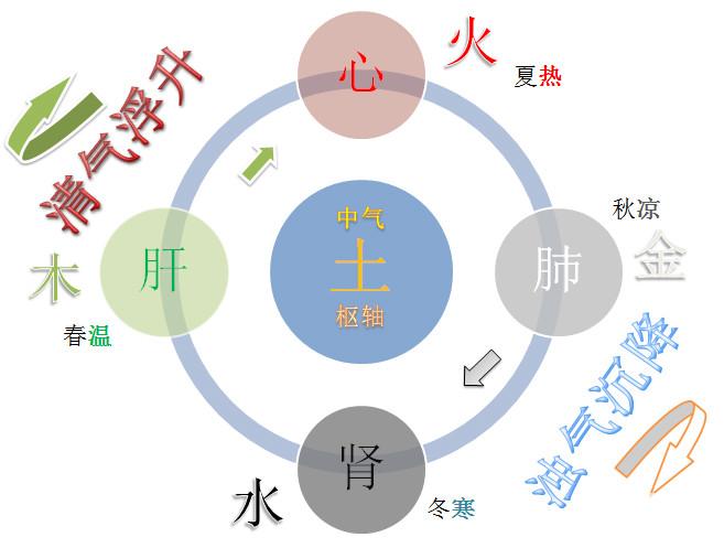 道源命理:周易阴阳五行理论和中医治病整体观思想